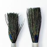 Peacock Brush